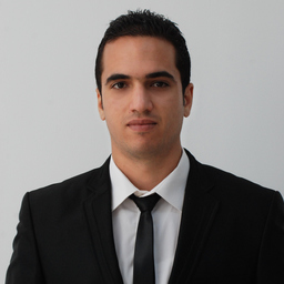 Dipl.-Ing. Hassine Benmessaoud's profile picture