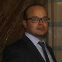 Dipl.-Ing. Hichem Brahim's profile picture