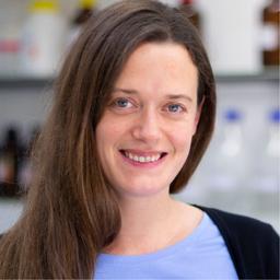 Dr. Kerstin Römermann