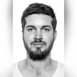 Tim Baumann's profile picture