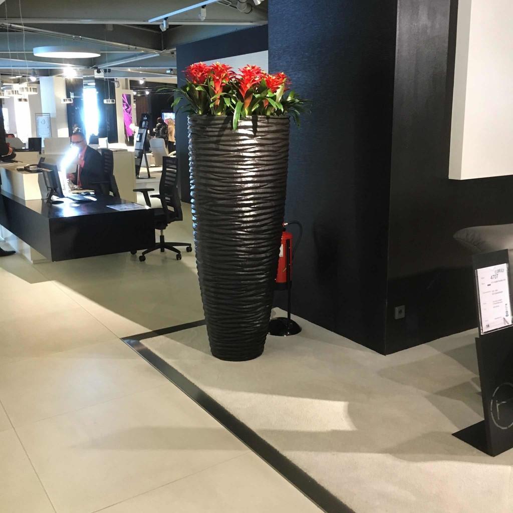 René Ernst - Geschäftsinhaber - Wohnhalle Baar AG | XING