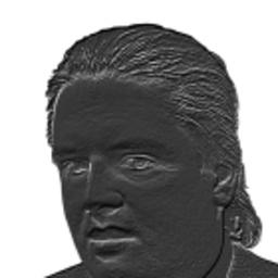 Harald Bohlinger's profile picture
