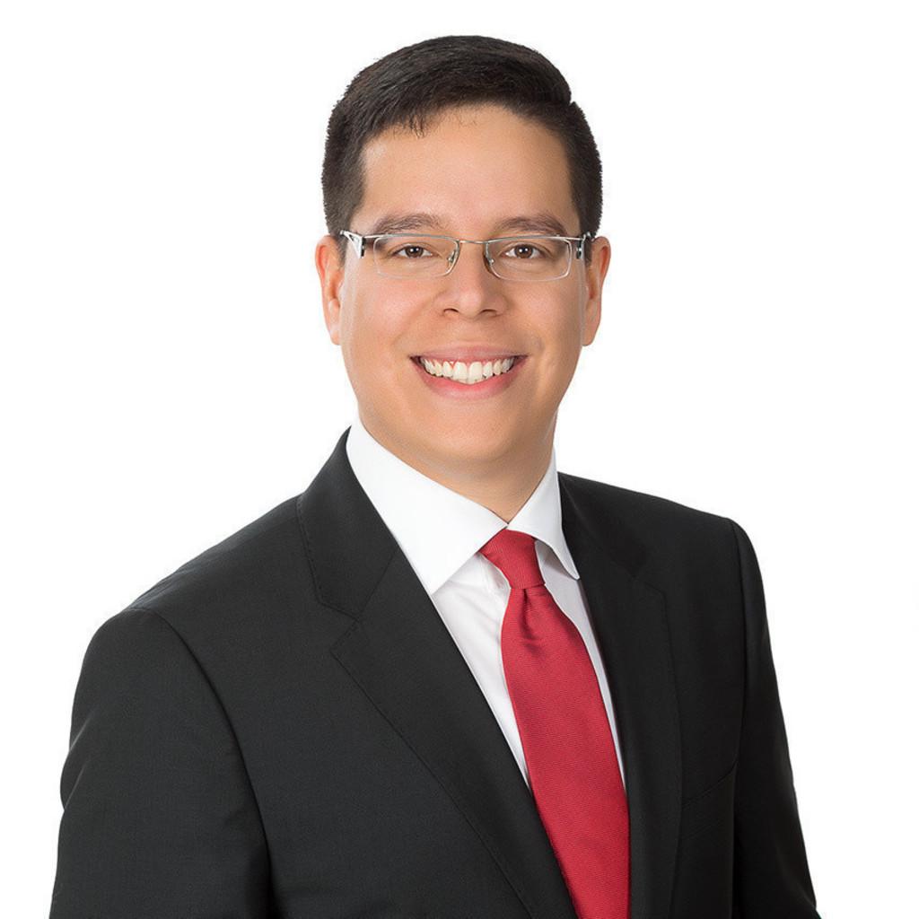 Carlos andres quintero borras junior consultant for Junior consultant