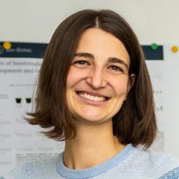 Dr. Rebecca Melcher