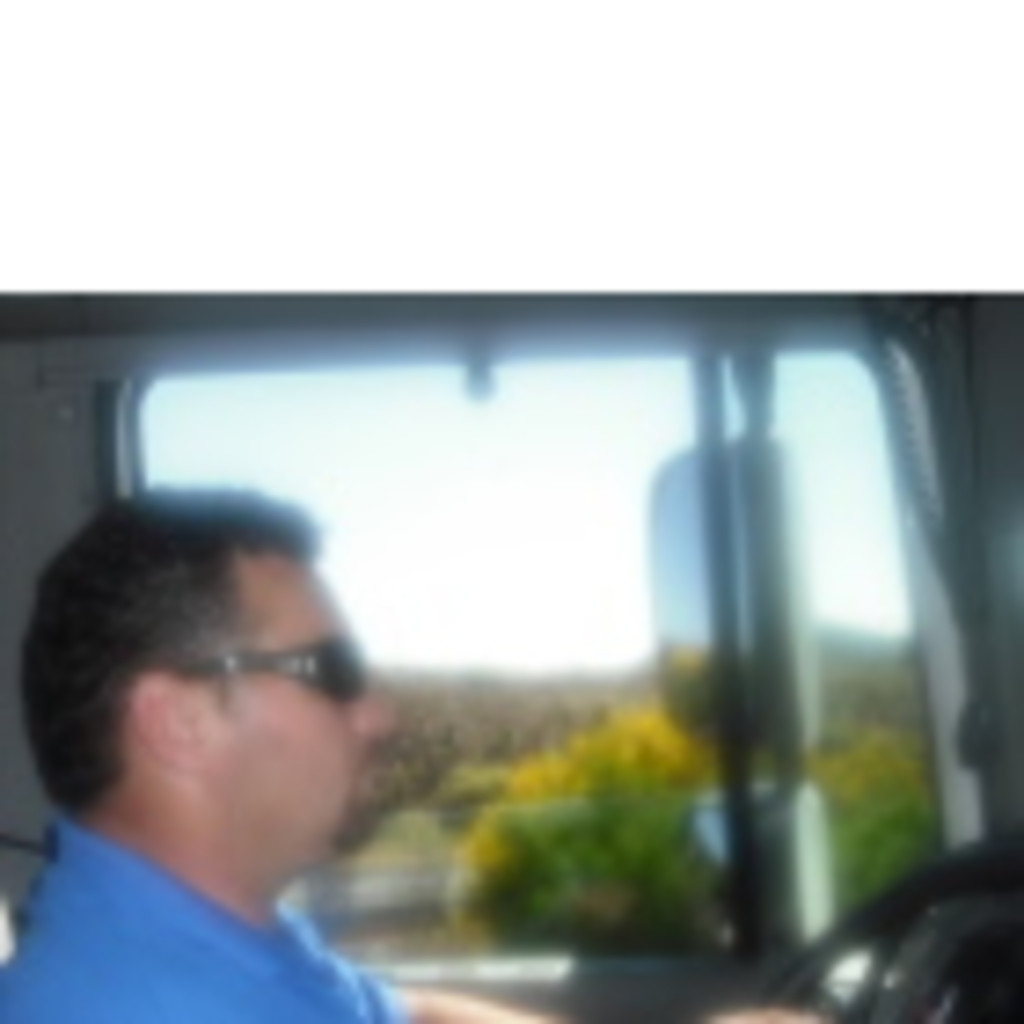 Aurel faur chofer trailer transpaleo gefco lkw walter for Busco trabajo en aranjuez
