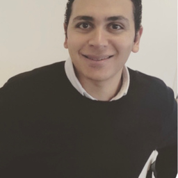 Ing. Mahmoud Abdelgelil's profile picture