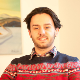 Denis Sabani's profile picture