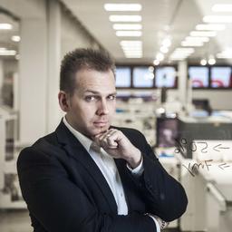 Thorsten Prygiel's profile picture