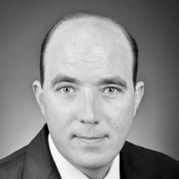 Daniel Sälzle - msg industry advisors ag - Ulm