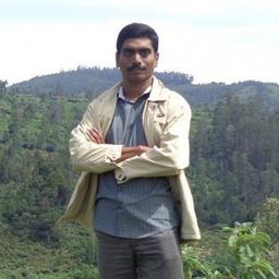 Abdul Hakkim - indexRise Web Services - Kerala, Palakkad