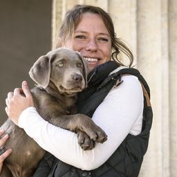 Julia Höhn - Hundetraining Leinenlos Julia Höhn - München