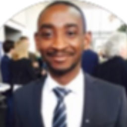 Essel Adjei-Mensah - ReachAd GmbH - Information Technology