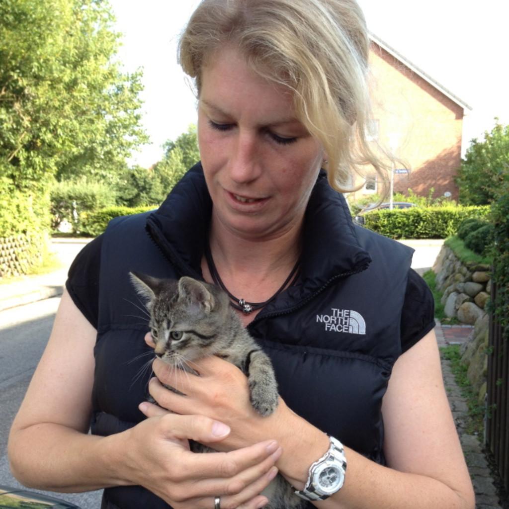 Heike Muller Jorgensen Tierarztin Pferdedentalpraktikerin Selbststandig Xing