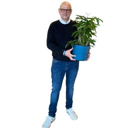 Torsten Meier - Ploß & Co. GmbH - Barsbüttel