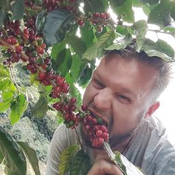 Lars Laube's profile picture