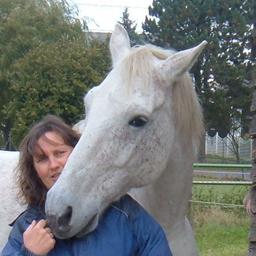 Daniela Gröll - Kontakt zur Tierseele - Beltheim