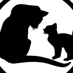 Patricia Lynn Hough - St. Francis Animal Rescue - Venice
