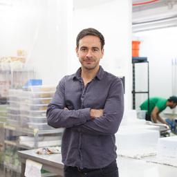 Paul Gebhardt - GreenGurus GmbH - Vallendar & Berlin