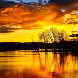 Murat Bayram