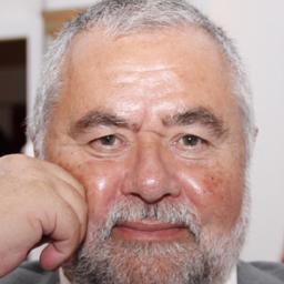 Gerhard Schlestein