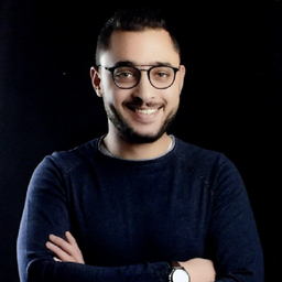 Ing. Mahmoud Amer's profile picture