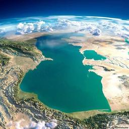 Fuad Ahmedov's profile picture