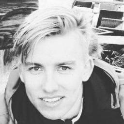 Niklas Belousow's profile picture