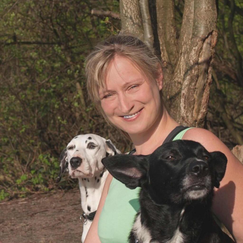 Monika Rohde - Tellington TTouch Coach für Hunde - Hunde