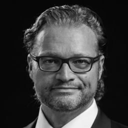 Prof. Dr. Dirk Zupancic - DZP Prof. Dr. Dirk Zupancic Projects GmbH - Ilsfeld
