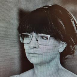 Stefanie Scherreiks's profile picture