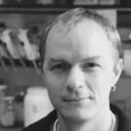 Dr. Malte Buchholz's profile picture