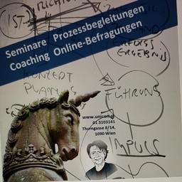 Wolfgang Halapier - UNICON Managementberatungsges.m.b.H. - Wien