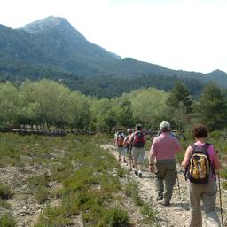 Maria Teresa Troja - Spanisch und Wandern auf Mallorca - Sa Rapita
