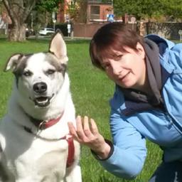 Deborah Milter Hundetrainerin Hundeschule Tiersicht Xing