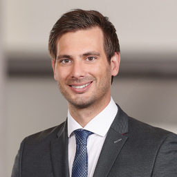 Ing. David Feike's profile picture