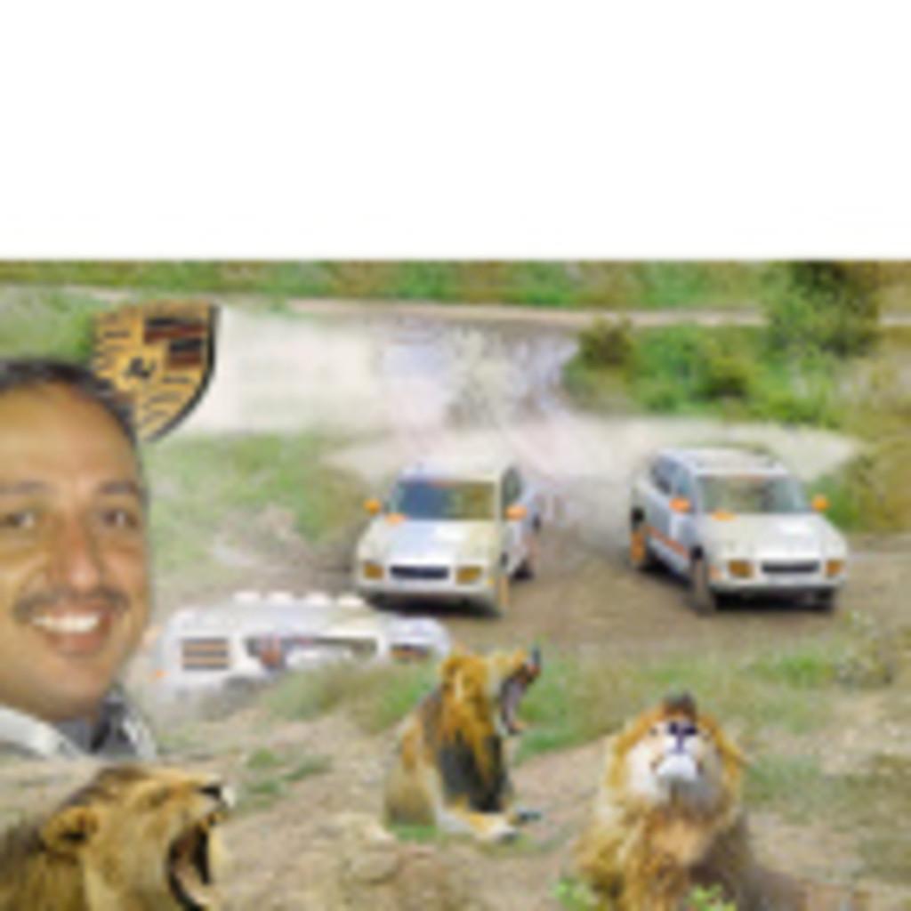 ADEL ABDULLA's profile picture
