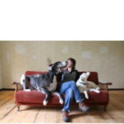 Nadine Liebert - Hundecouch- tierpsychologische Beratung - Magdeburg und Umgebung