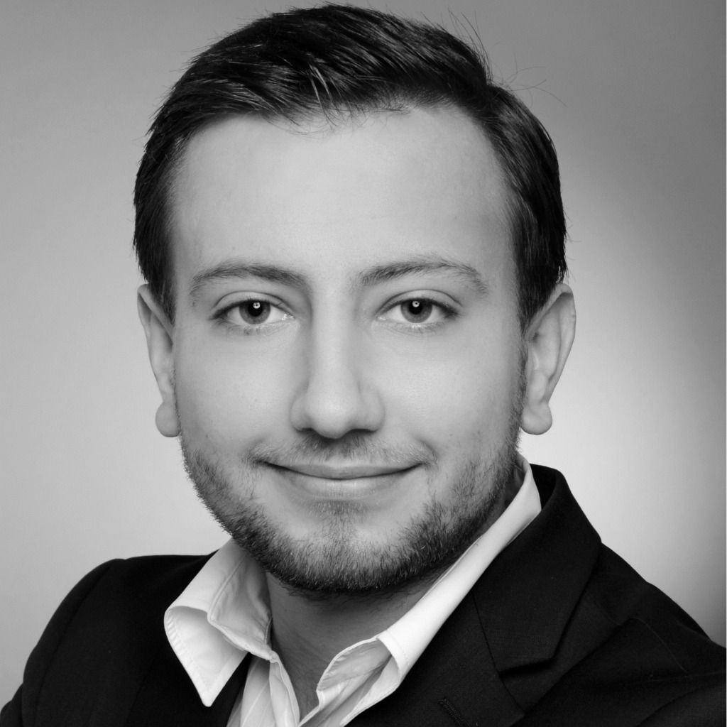 Alexander neagu junior consultant infologis ag xing for Junior consultant