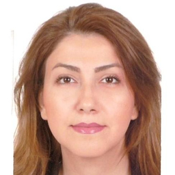 Sara Mohammadi's profile picture