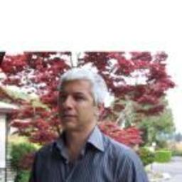 Massimo Bassini's profile picture