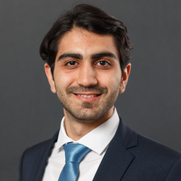 Sina Aghababaei Najjar's profile picture