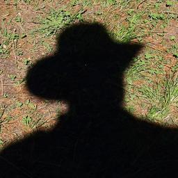 Dipl.-Ing. Ulrich Kanz's profile picture