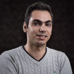 Mo Mirmousavi's profile picture