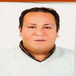 Hosam Shoeib - freelancer - Cairo