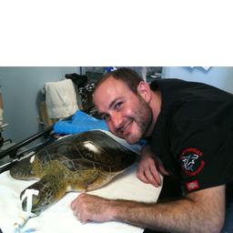 Jonathan Rubinstein DVM - Country Chase Veterinary Hospital - Tampa, FL, US