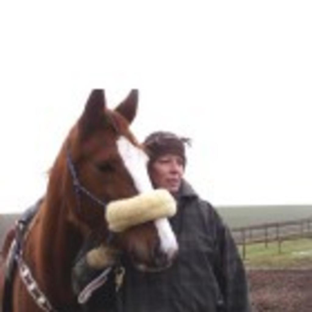 Gabriele Prinz - Reitlehrerin - Pferde sind mein Leben | XING
