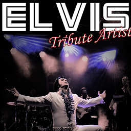 Andreas Stolzenthaler - Andy King - Elvis Tribute Artist - Sulzfeld