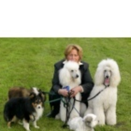 Renate Müller - Hunde-Atelier - Bremen