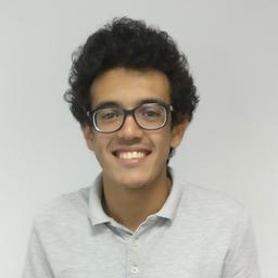 Mohamed El-Fawal