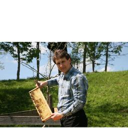 Markus Graf - BIO- & Apitherapieimkerei; Imkereibedarf Graf ; Spezialreinigung Graf - Bad Tölz